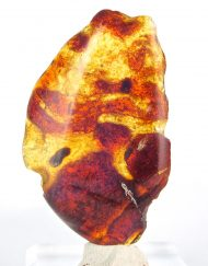 Blue Dominican Amber Piece Half Polished 7.2 g