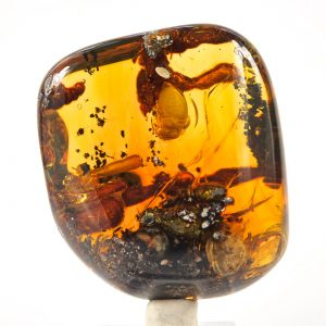 Blue Green Mexican Amber Piece with Methane Termite Inclusions 64.5 g