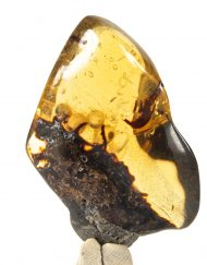 Fully Polished Blue Green Mexican Amber Piece with Pyrite and Moving Enhydro Inclusions 10.7 g