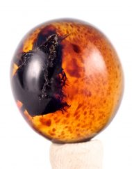 Fully Polished Indonesian Blue Amber Cabochon, 4.3 g