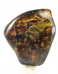 Fully Polished Mexican Amber with Acacia Flower and Pyrite Inclusions 7.7 g