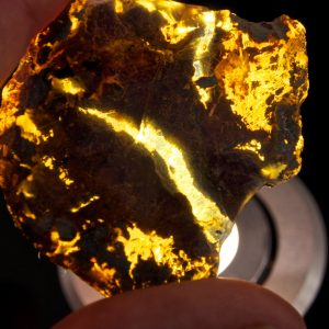 Half Polished Blue Dominican Amber Stone 11.7 g