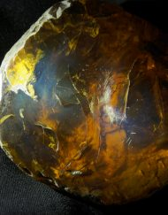 Half Polished Dominican Amber  90.8 g