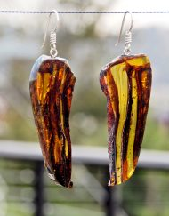 Mexican Amber Earring Slices 10.7 g