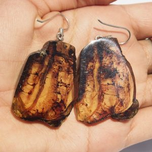 Mexican Amber Earring Slices 14.1 g