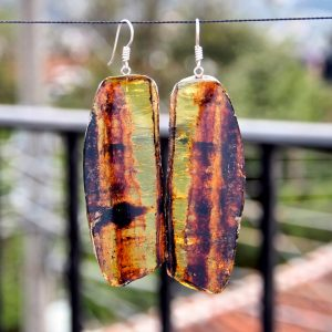 Mexican Amber Earring Slices 23.1 g