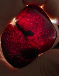 Red Mexican Amber Stone Half Polished 16.1 g