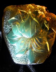 Mexican Amber Relief
