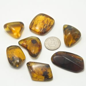 Mexican Amber Pieces