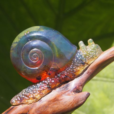 Mexican amber snail carving