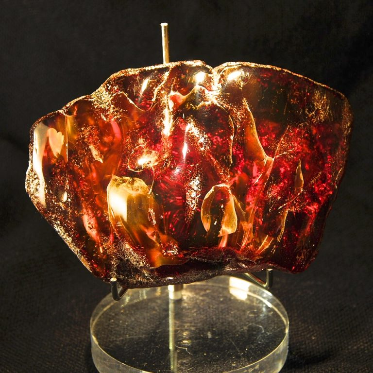 Dominican Amber